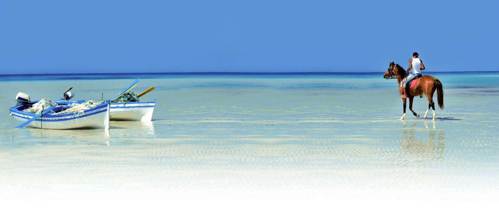 L'isola di Djerba, tra spiagge bianche e mare cristallino
